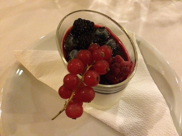 Panna cotta with wild berries